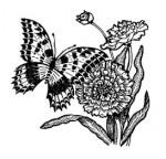 Butterfly__Flowers_1.jpg