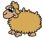 Sheep_-_Cartoon_2.jpg