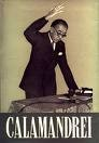 Piero Calamandrei.jpg